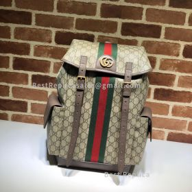 Gucci Ophidia GG Medium Backpack 598140